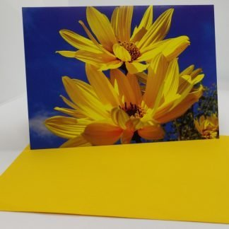 Greeting Cards with envelopes (Yellow Flower) Blank inside