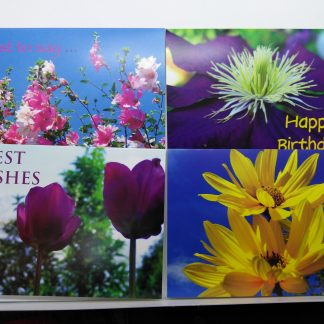Birthday Cards and Greeting Cards